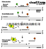 RNAi干扰检测