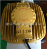 HRD93-55W防爆LED灯/护栏式LED防爆平台灯