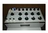ZX79D+ 兆欧表标准电阻器