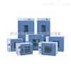 ADX-LH-100L武汉热老化试验箱