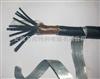KVVP32KVVRP32KVVP-22铠装屏蔽软控制电缆