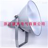超强投光灯250W AC220V IP65