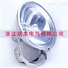 FAT-L250w-B防水防尘防腐泛光灯