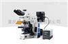 RX50研究级荧光显微镜