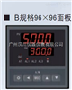 XSC5-BFRTICIBIVO智能调节仪 PID