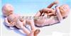 KAH-L2高级新生儿模型