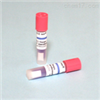 H3723压力蒸汽灭菌生物培养指示剂