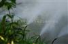 江西游乐园造景喷雾造景工程雾森设备