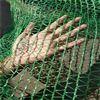 六针加密绿色盖土网批发市场